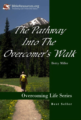 Pathway Into The Overcomer's Walk Image